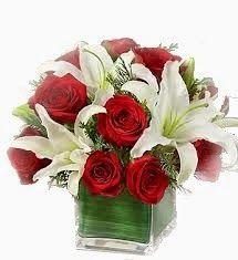 Asyifa Bunga Mawar Florist Tlp 087883711884 | Toko Bunga Jakarta | Toko Karangan Bunga.
