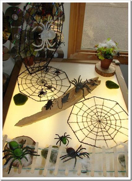 Spiders on the light table