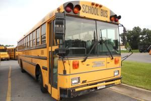 If you're looking to build a tiny roaming home on the cheap, consider tricking out an old yellow school bus.: How Much Does a School Bus Cost?
