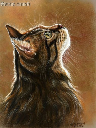 Tabby cat something of interest limited edition print painting anne marsh art