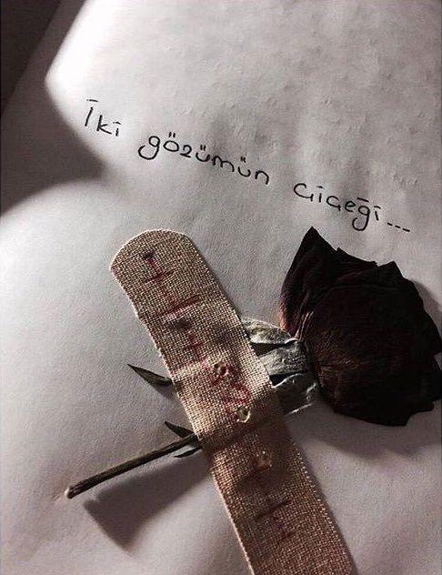 İki gözümün çiçeği... #sözler #anlamlısözler #güzelsözler #manalısözler #özlüsözler #alıntı #alıntılar #alıntıdır #alıntısözler #şiir #edebiyat