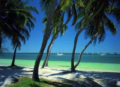 Anna Marie Island...my family and I have been there twice, stunning!