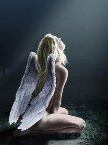 Angels Among ME!