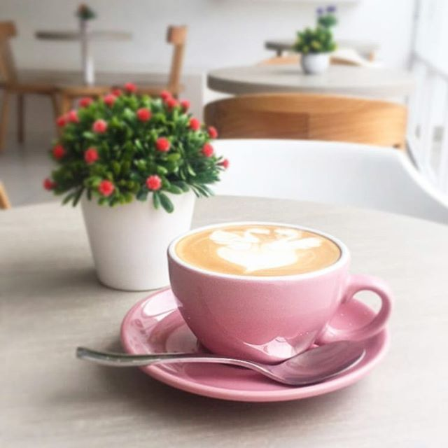 Get Your Favorite Coffee In Singapore From Sensuri Best Colombian Coffee Brand Coffee Bean Singapore And Hav Coffee Branding Colombian Coffee Coffee Beans