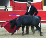 I find bullfights to be one of the most abhorrant displays of animal cruelty on earth. As a life-long... (27160 signatures on petition)