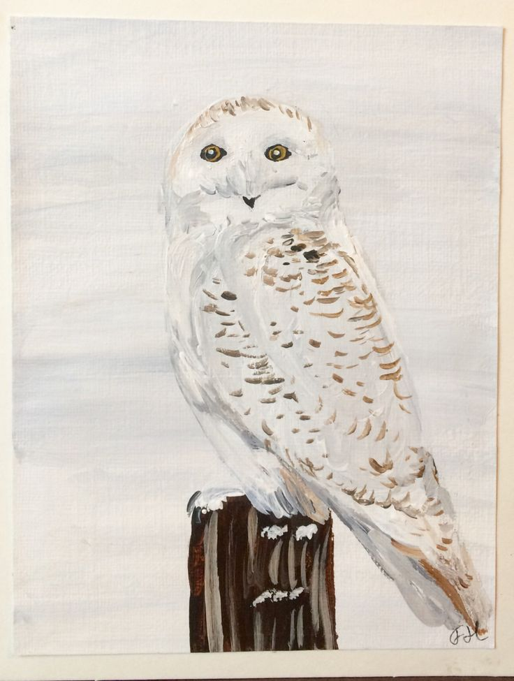 Snowy Owl Hand Painted Holiday Card, Christmas or Winter, Cute winter bird, Acrylic Painting Art Card,  5 x 6.5in,  Winter Wildlife, Canada by FHarrisArtShop on Etsy