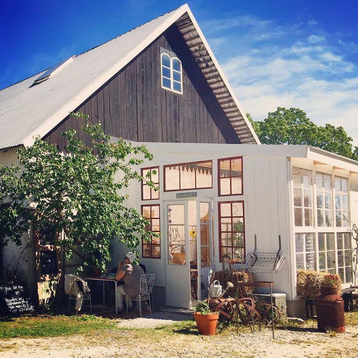 """379 gilla-markeringar, 11 kommentarer - Gotlandspärlor & guldkorn (@gotlandstips) på Instagram: """"God morgon! Ett av mina absoluta favoritställen på ön är Emmas och Martins @primagard i Bunge…"""""""