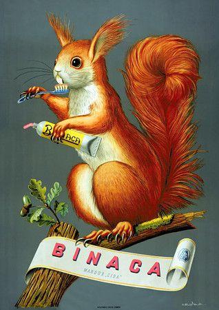 Vintage Binaca Toothpaste Squirrel 1940s Advertsising Poster Print