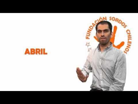 Meses del año (Lengua de Señas Chilena) - YouTube