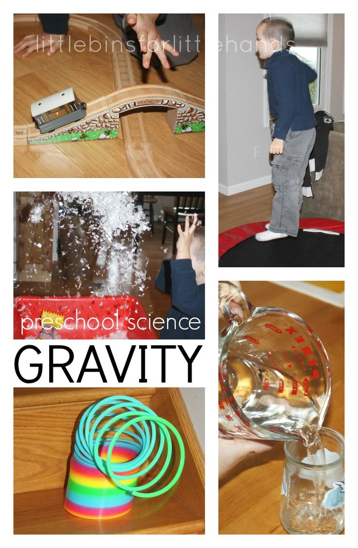 Gravity Science Experiment and Activities for Kids
