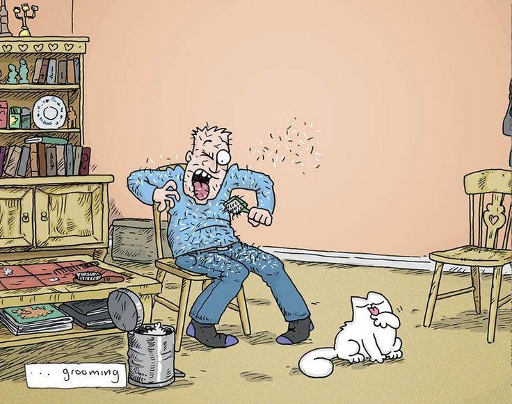 Simon's Cat Vs. the World Book!