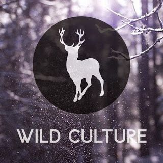 Music Thieves: Wild Culture - The TIDE (Original Mix)