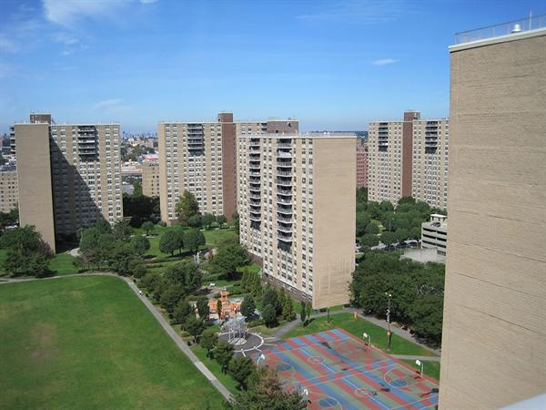 Starrett City Spring Creek Towers Growing Up The