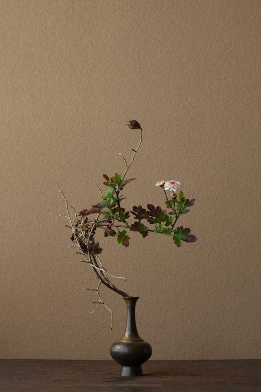 2012年2月13日(月) 利休は長く咲き続ける花を嫌いましたが、冬にはありがたいものです。 花=菊(キク)、夏椿(ナツツバキ) 器=金銅華瓶(鎌倉時代)