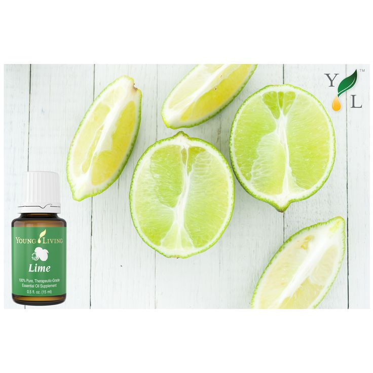 Lime essential oil has an invigorating and stimulating effect and is believed to be native of eastern Malaysia. The pleasant citrus aroma of lime may help mental clarity and encourage creativity. Today, lime is best known throughout the world as a way to help support a healthy immune system. When taken internally, lime may provide antioxidant support and aid in weight management. #younglivingessentialoils