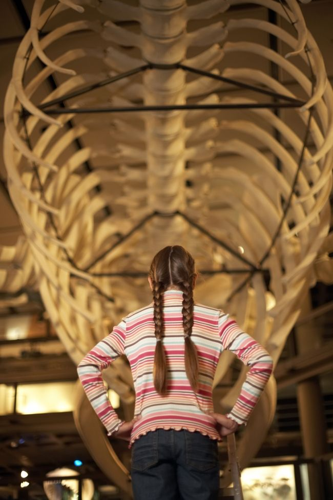 6 Tips for Engaging Kids at Museums