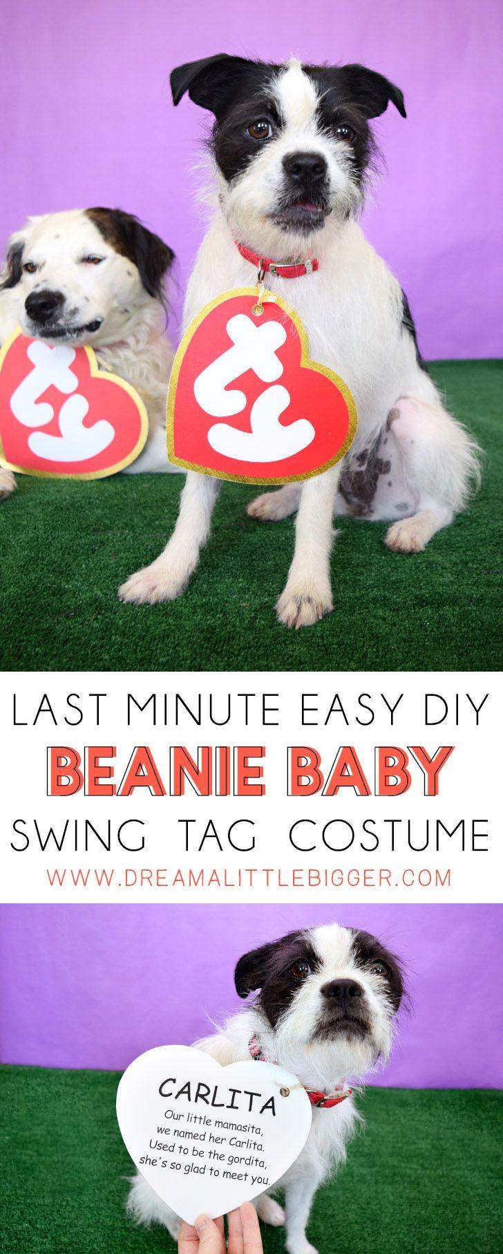 25+ best Beanie baby costumes ideas on Pinterest | Dog ...