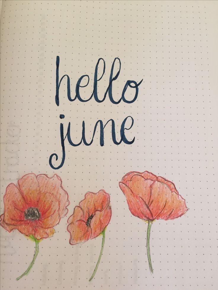 Bullet Journal page. Hello June and poppy