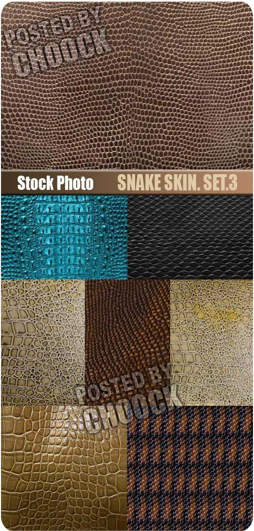 Snake skin. Set.3 - Stock Photo 8 jpg | Up to 8700*6526 pix | 300 dpi | 157 Mb rar