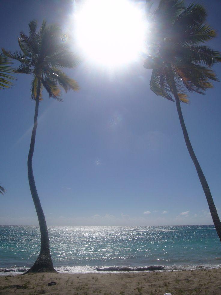 Playa Paradisíaca, República Dominicana