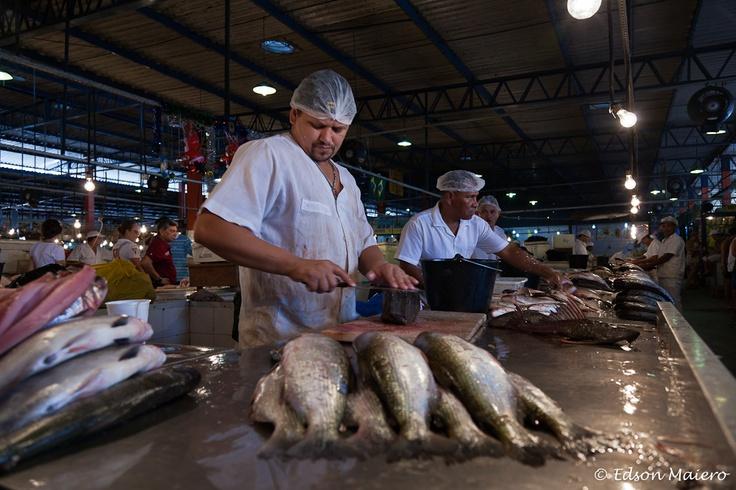 Mercado Municipal Adolpho Lisboa - peixe fresco