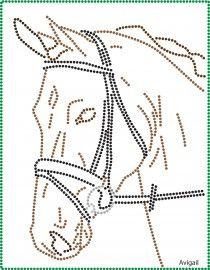 paard                                                                                                                                                                                 More
