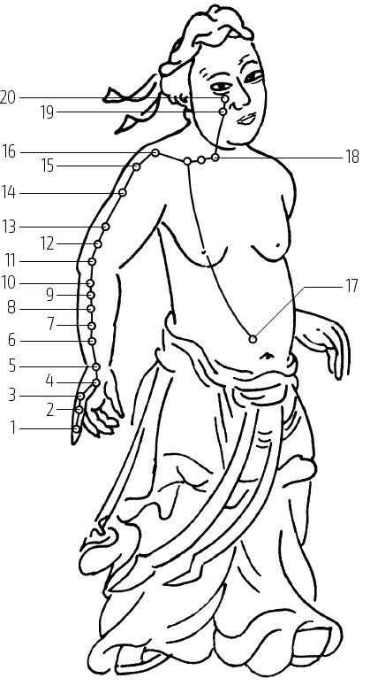 Каналы человеческого тела и точки акупунктуры - Цигун – китайская гимнастика для здоровья. Современное руководство по древней методике исцеления - Юйфэн Цэнь - RuTLib.com - Ваша домашняя библиотека