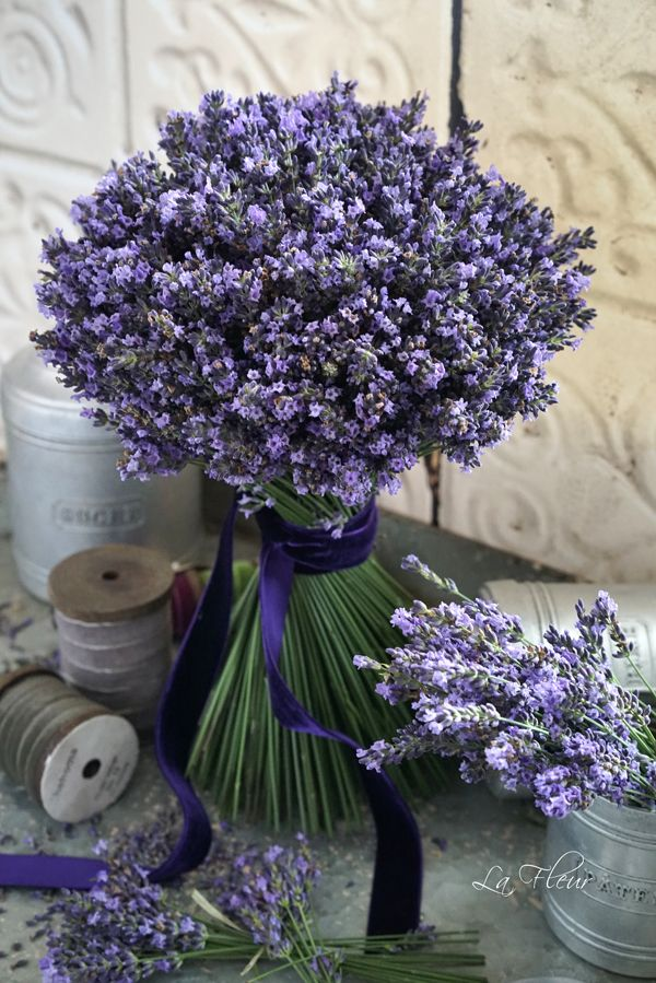 lavender bouquet. Bridesmaids?