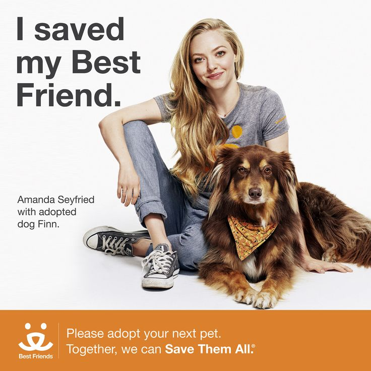 "It's rare that you'll see the gorgeous and talented Amanda Seyfried without her sidekick and adopted canine, Finn. In fact, Finn has even accompanied the ""Ted 2"" and ""Pan"" actress on talk show appearances! But these two celebrities are more than just pretty faces - they've teamed up with Best Friends to help spread the word about the 9,000 dogs and cats that are killed every day in America's shelters.   Click through to get involved to help us Save Them All."