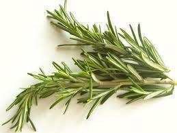 Rosemary herb benefits
