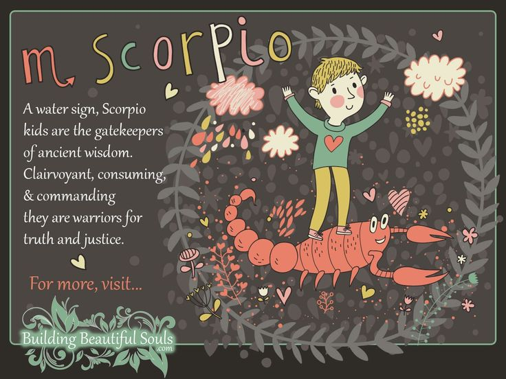 Discover in-depth info about the Scorpio Child. Read all about the Scorpio Girl and Scorpio Boy in our Astrology & Zodiac Signs For Kids series!