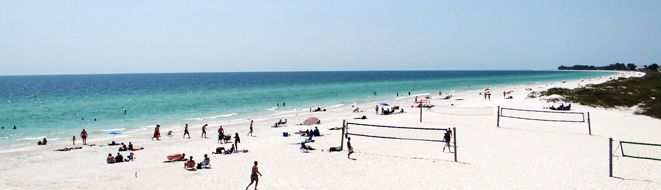 Find tons of shells at Manatee Public Beach Access. #AnnaMariaIsland #Shelling