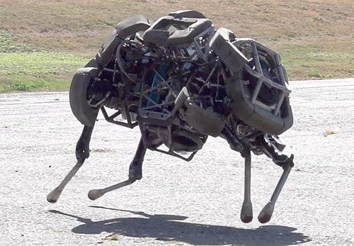 """Boston Dynamics Announces New """"WildCat"""" Quadruped   WildCat is a four-legged robot being developed to run fast on all types of terrain. So far WildCat has run at about 16 mph on flat terrain using bounding and galloping gaits. The video shows WildCat's best performance so far. WildCat is being developed by Boston Dynamics with funding from DARPA's M3 program."""