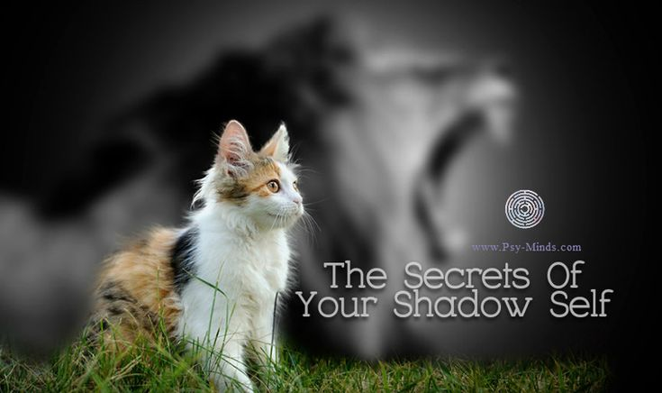 The Hidden Secrets Of Your Shadow Self - via @psyminds17