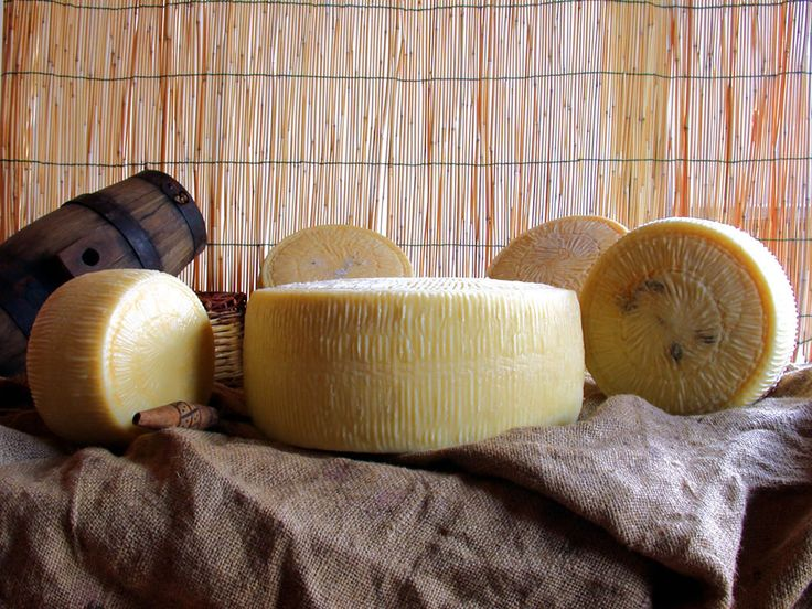"""Filiano Pecorino Cheese PDO.  The """"Filiano Pecorino Cheese PDO"""" (Protected Designation of Origin)  is produced with milk of sheep reared to the brado state in areas of the Appennino-Western North of Lucania included between 900 and the 1400 slm meters."""