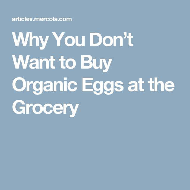 Why You Don't Want to Buy Organic Eggs at the Grocery