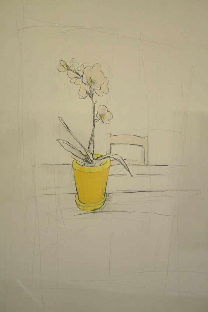Candice Dawn B / Still life with yellow pot (1-3)