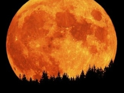 Stunning.: Misc Photography, Awesome Photo, Amazing Pictures, Super Moon, Amazing Things, Full Moon, Supermoon, The Moon, Moon Tonight
