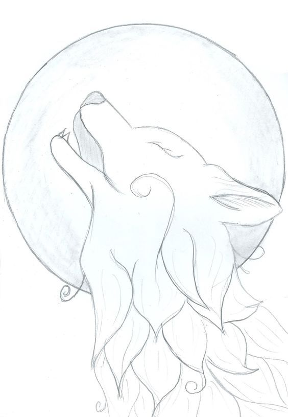 Легкие рисунки волка с луной крутой эксперт