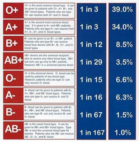 18 best blood type images on pinterest blood types blood groups blood types information do you know your blood type o blood donor here fandeluxe Gallery