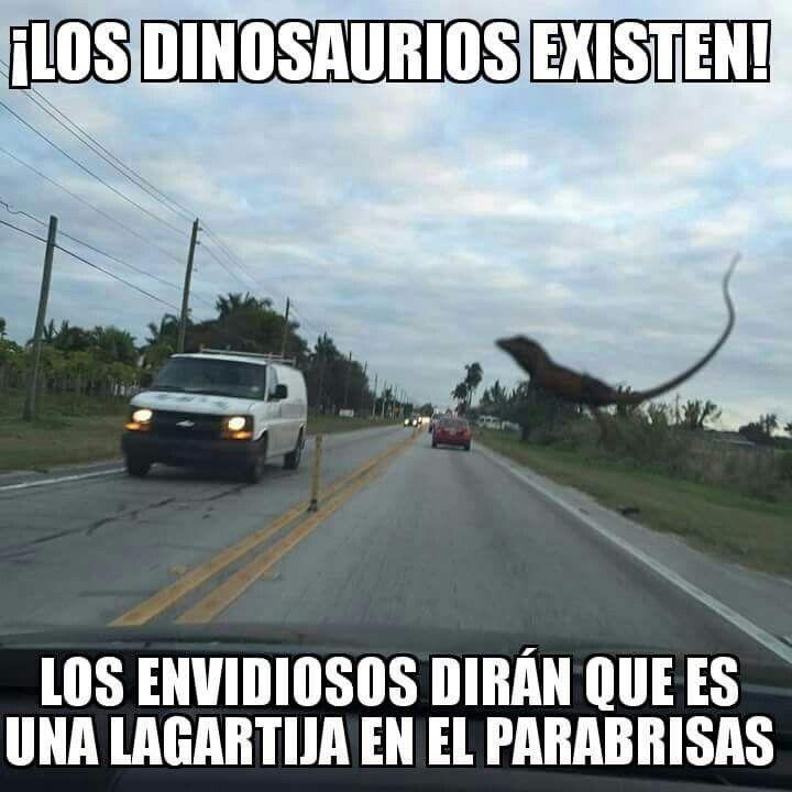 Los Dinosaurios existen. ..