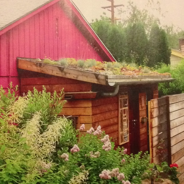 17 best images about green roofs on pinterest the roof for Garden shed gin
