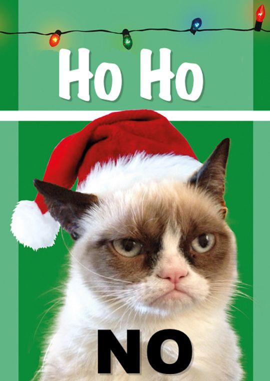 Grumpy cat worst | ... de Grumpy Cat dans le téléfilm Grumpy Cat's Worst Christmas Ever