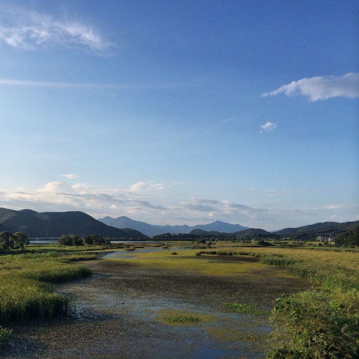경안천습지공원 2014.8.30