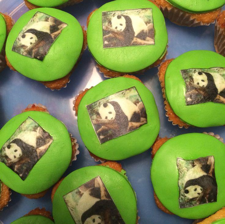 Cupcake panda Fotoouwel