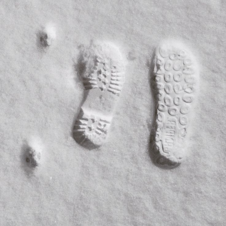 Karda ayak izleri. Kedi ben ve oğlum. (Footprints in the snow. Cat, I and my son.)