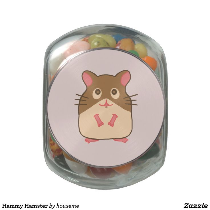 Hammy Hamster Glass Jar