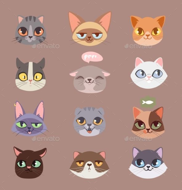 Cats Heads Vector Illustration Cute Animal Funny Decorative