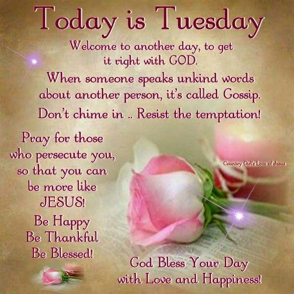 Tuesday Morning Quotes 786 Best Tuesday Blessingsgreetings Images On Pinterest  Tuesday .