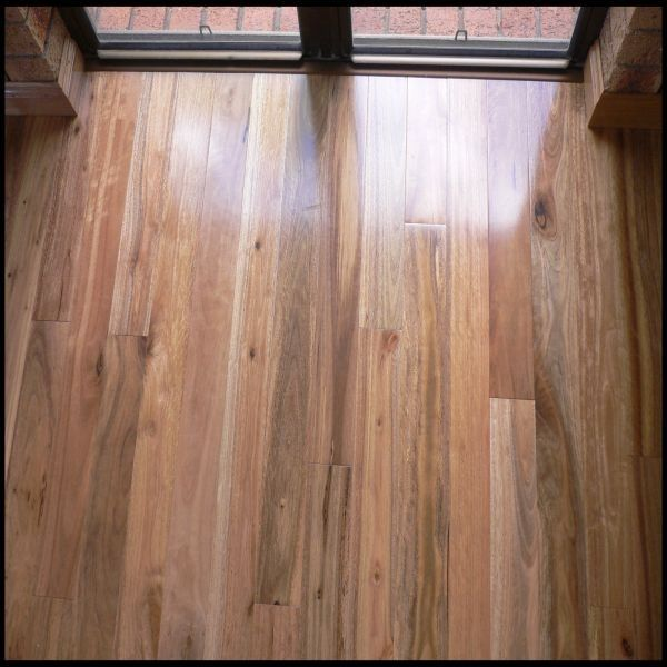 Solid Spotted Gum Wood Flooring